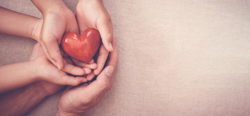 Image showing hands holding plastic heart - caring concept
