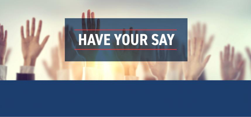 banner image stating have your say